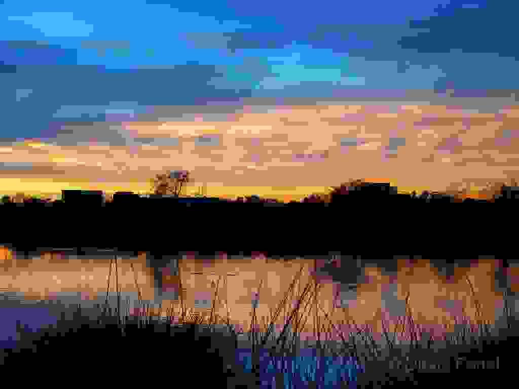 IRWD San Joaquin Marsh & Wildlife Sanctuary